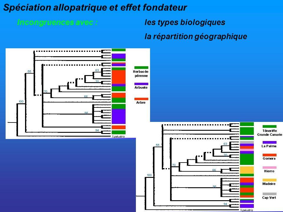 Spéciation allopatrique et effet fondateur Incongruences avec :les types biologiques la répartition géographique