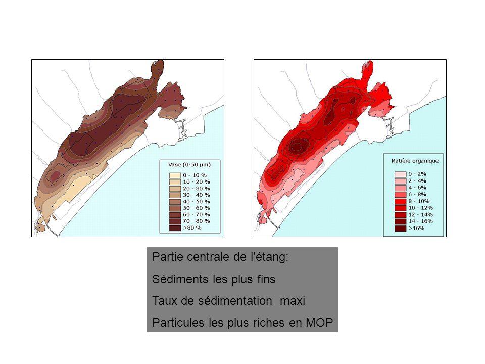 Partie centrale de l'étang: Sédiments les plus fins Taux de sédimentation maxi Particules les plus riches en MOP