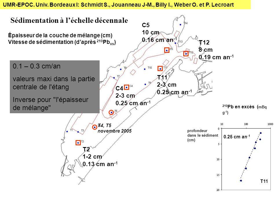 C5 C4 Taux de bioturbation C5 cm 2 an -1 7 Be (53 jours) 234 Th (24.1 jours) moyenne forte saisonnalité intensité de mélange modérée UMR-EPOC.