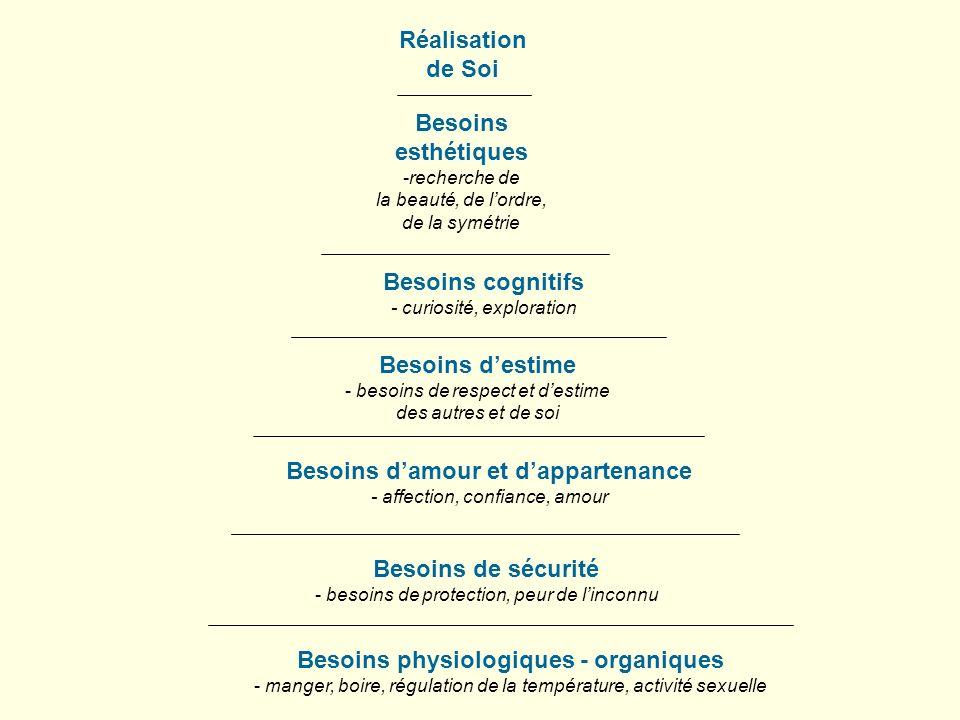 Réalisation de Soi Besoins esthétiques -recherche de la beauté, de lordre, de la symétrie Besoins cognitifs - curiosité, exploration Besoins destime -