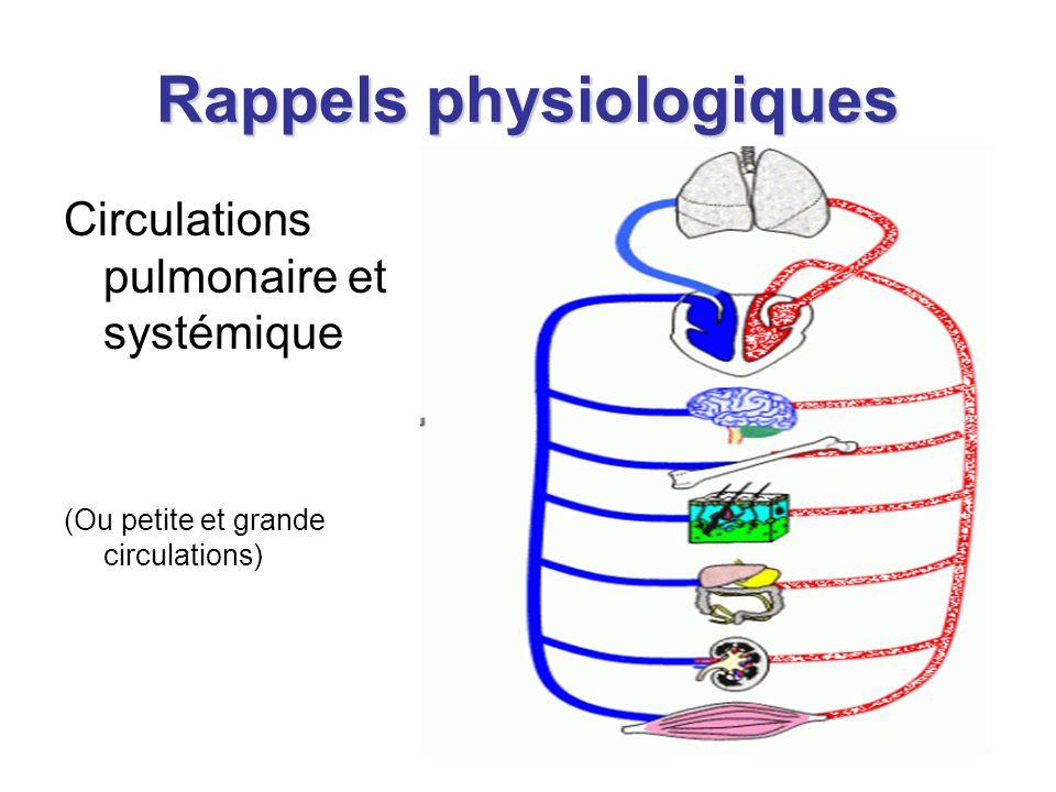 Rappels physiologiques Circulations pulmonaire et systémique (Ou petite et grande circulations)
