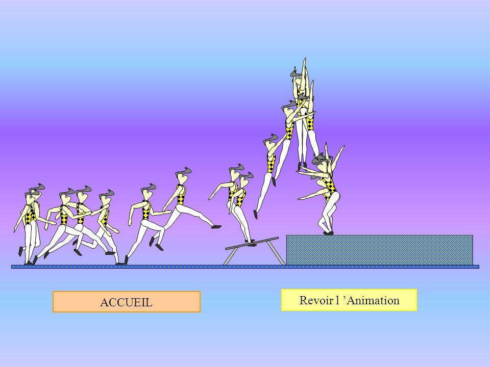 Voir l Animation Accueil