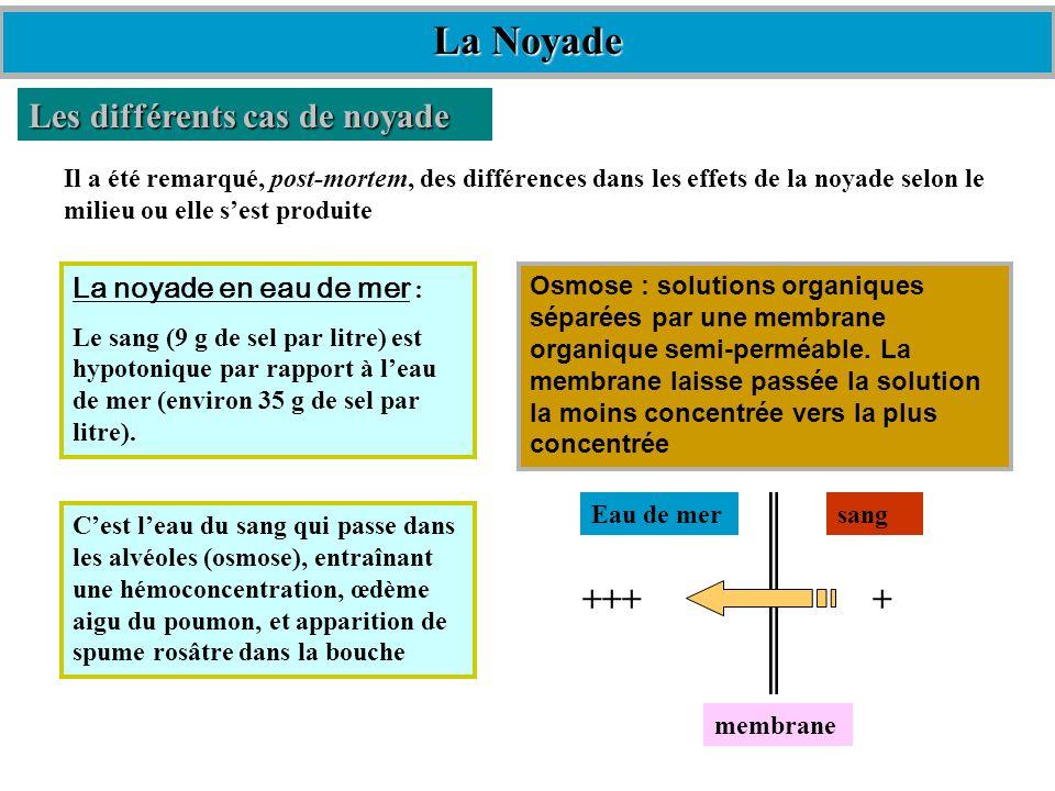 Les différents cas de noyade Il a été remarqué, post-mortem, des différences dans les effets de la noyade selon le milieu ou elle sest produite Osmose