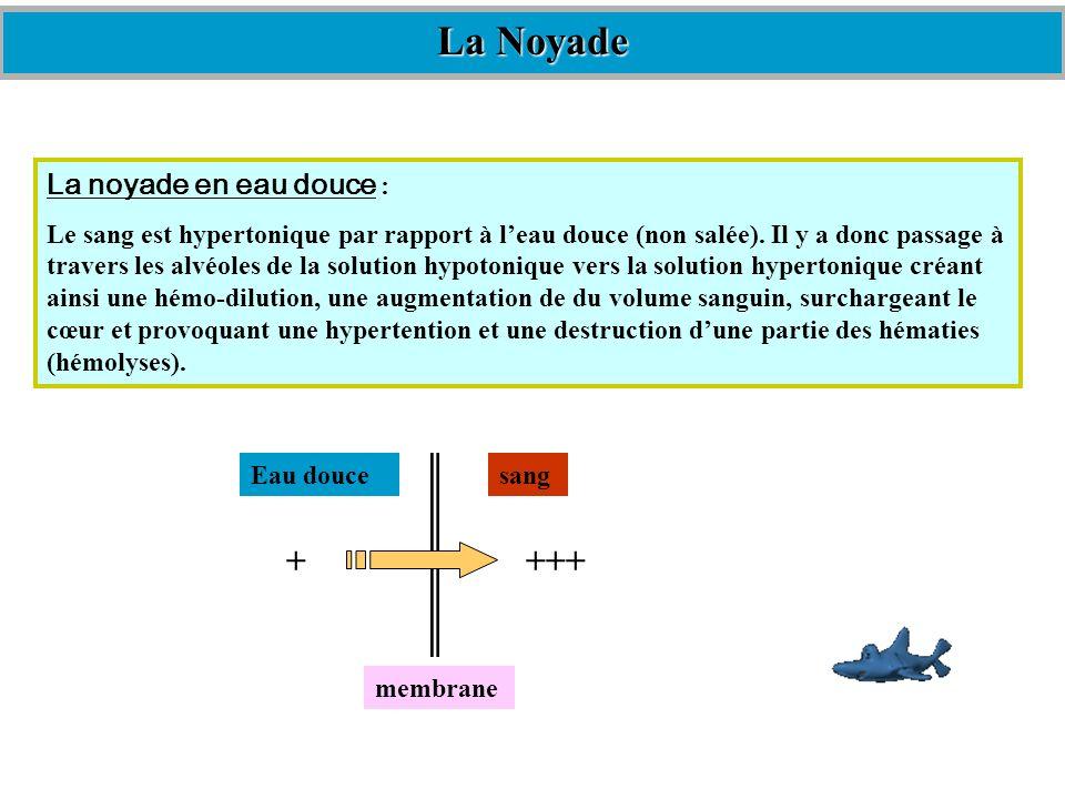 La noyade en eau douce : Le sang est hypertonique par rapport à leau douce (non salée). Il y a donc passage à travers les alvéoles de la solution hypo