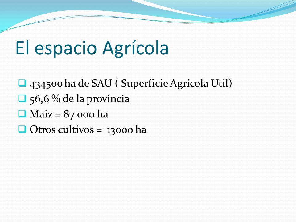 El espacio Agrícola 434500 ha de SAU ( Superficie Agrícola Util) 56,6 % de la provincia Maiz = 87 000 ha Otros cultivos = 13000 ha