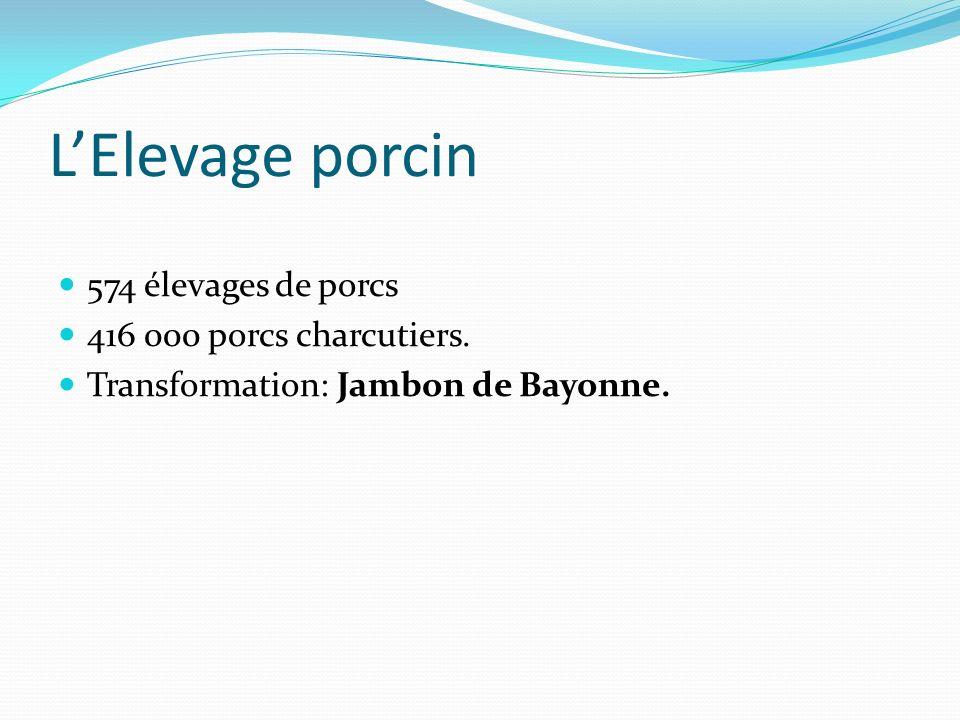 LElevage porcin 574 élevages de porcs 416 000 porcs charcutiers. Transformation: Jambon de Bayonne.