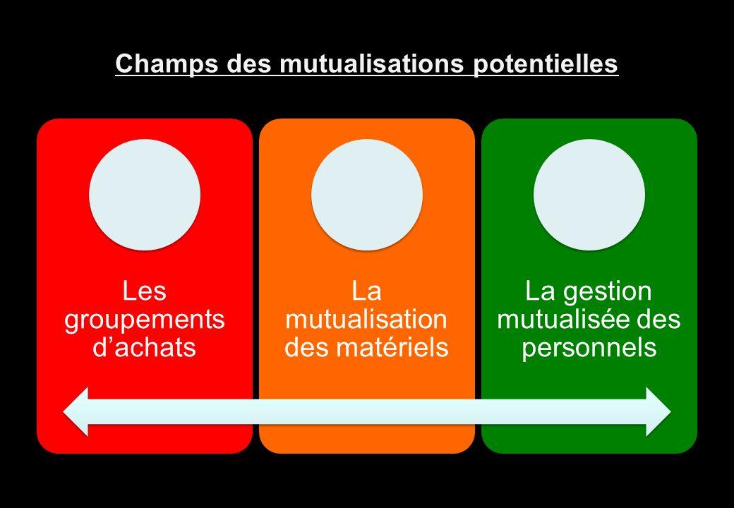 Champs des mutualisations potentielles Les groupements dachats La mutualisation des matériels La gestion mutualisée des personnels Vincent-Aubelle@wan