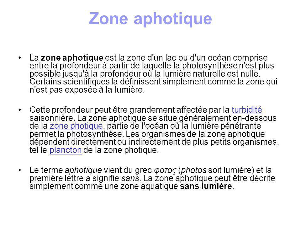 Zone photique La zone photique est la zone comprise entre la surface et la profondeur maximale (d un lac ou d un océan) exposée à une lumière suffisante pour que la photosynthèse se produise.