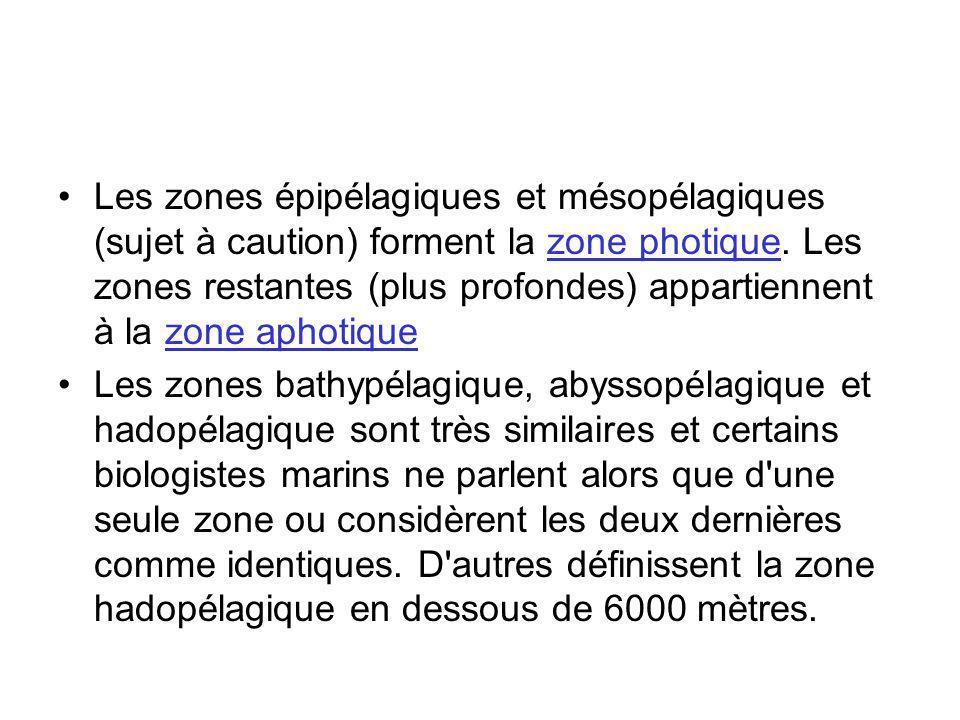 Les zones épipélagiques et mésopélagiques (sujet à caution) forment la zone photique. Les zones restantes (plus profondes) appartiennent à la zone aph