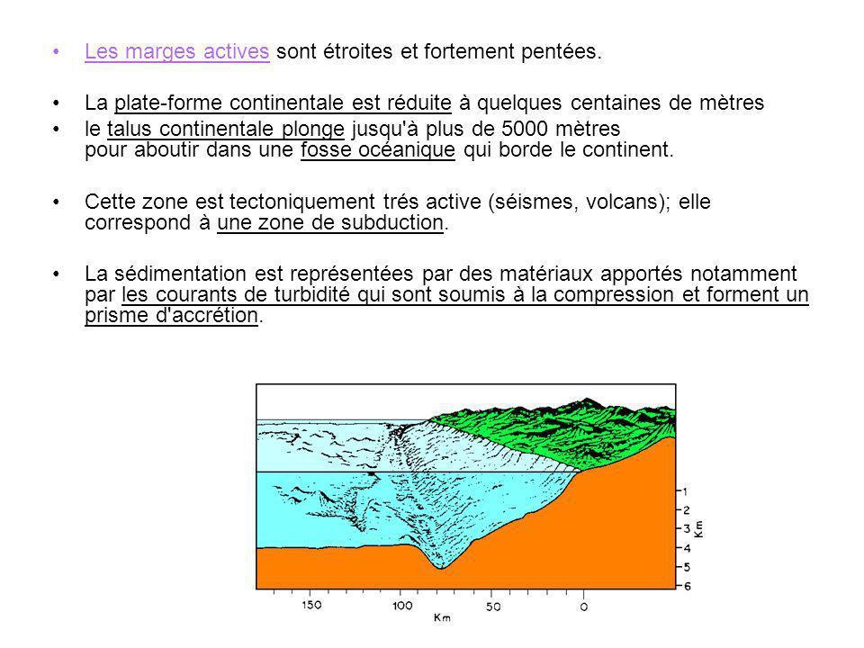 2.2 Les bassins océaniques Ce sont de vastes étendues plates situées à environ 5000 m de profondeur et appelées encore plaines abyssales.