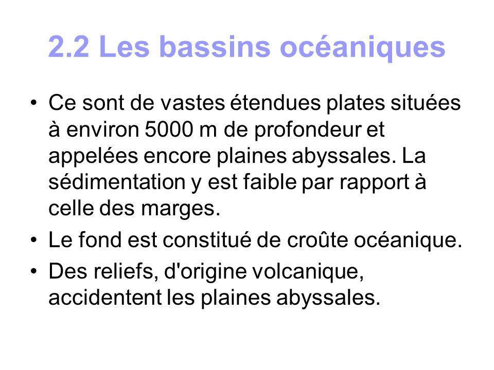 2.3 Les dorsales océaniques Ces chaînes sous-marines occupent généralement la partie médiane des océans (d où leur nom de rides médio océaniques).