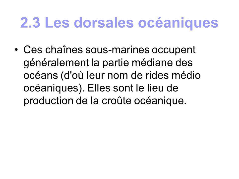 3.4 Hydrodynamisme L eau des océans est agitée par divers types de mouvements qui sont dûs au phénomène de la marée, à l action des vents créant des vagues, aux différences de température et de densité qui déterminent les déplacements en masse des grands courants océaniques.