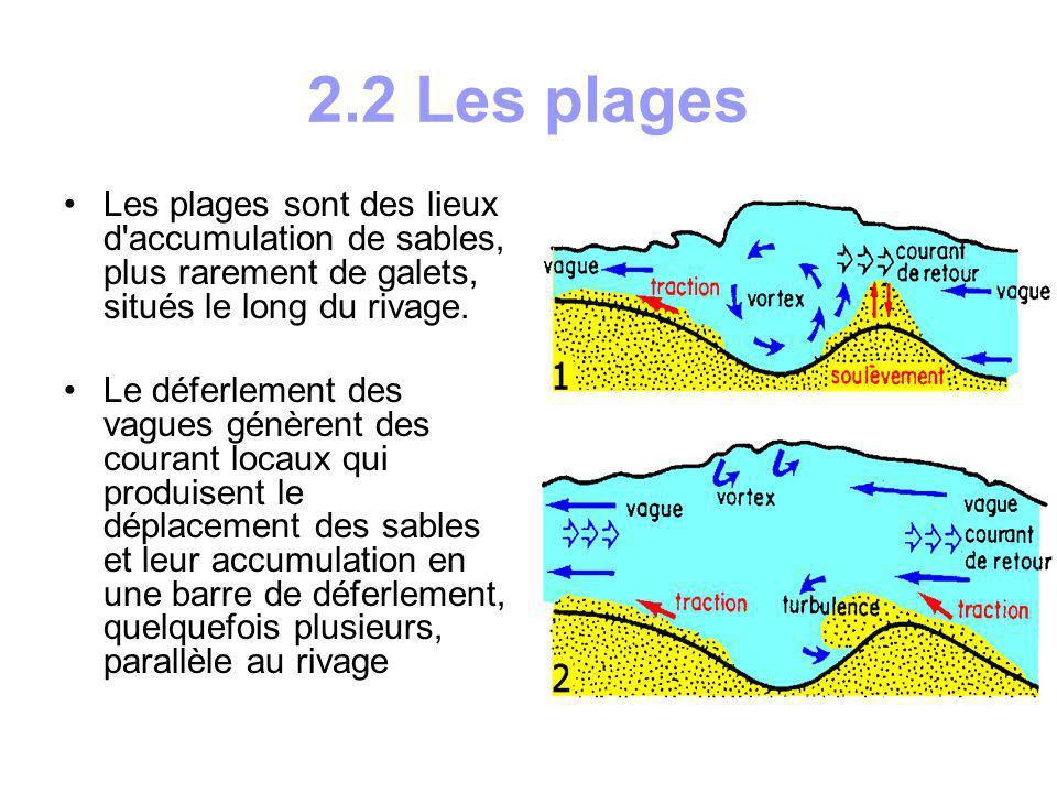 a)Origine des matériaux Les sables proviennent généralement du continent; ils sont apportés par les fleuves dans les estuaires et les deltas puis dispersés le long du littoral par les courants: c est le cas des plages de Vendée (Loire) et de Camargue (Rhône).