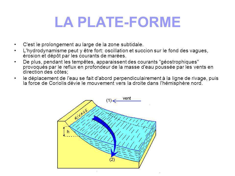 Selon la vitesse des courants le fond est érodé ou des sédiments s y déposent.