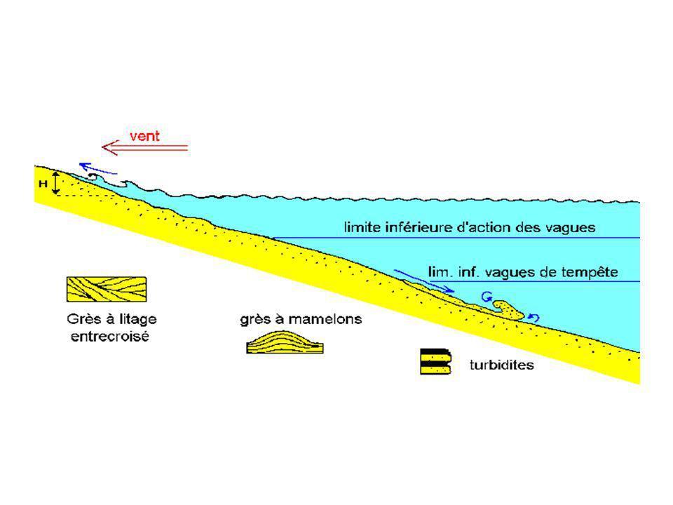 4.2 Quelques exemples Les roches détritiques littorales sont abondantes dans les séries géologiques: de nombreuses formations gréseuses sont d anciens sables de plage ou de plate-forme.