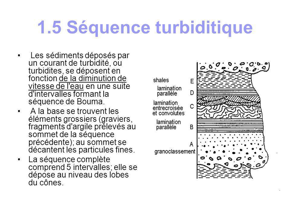 1.6 Faciès turbiditiques L organisation de la séquence turbiditique change en fonction de sa position dans le cône sous- marin et donc de la vitesse du courant.