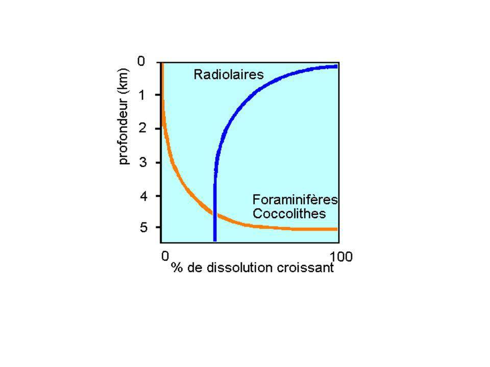 2.2 Les boues calcaires La dissolution du calcaire augmente avec la profondeur: ce phénomène est dû à la teneur en CO2 qui est grande à basse température et sous pression.