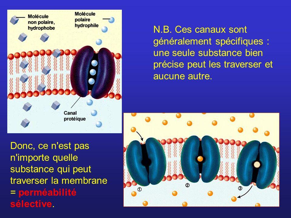 N.B. Ces canaux sont généralement spécifiques : une seule substance bien précise peut les traverser et aucune autre. Donc, ce n'est pas n'importe quel