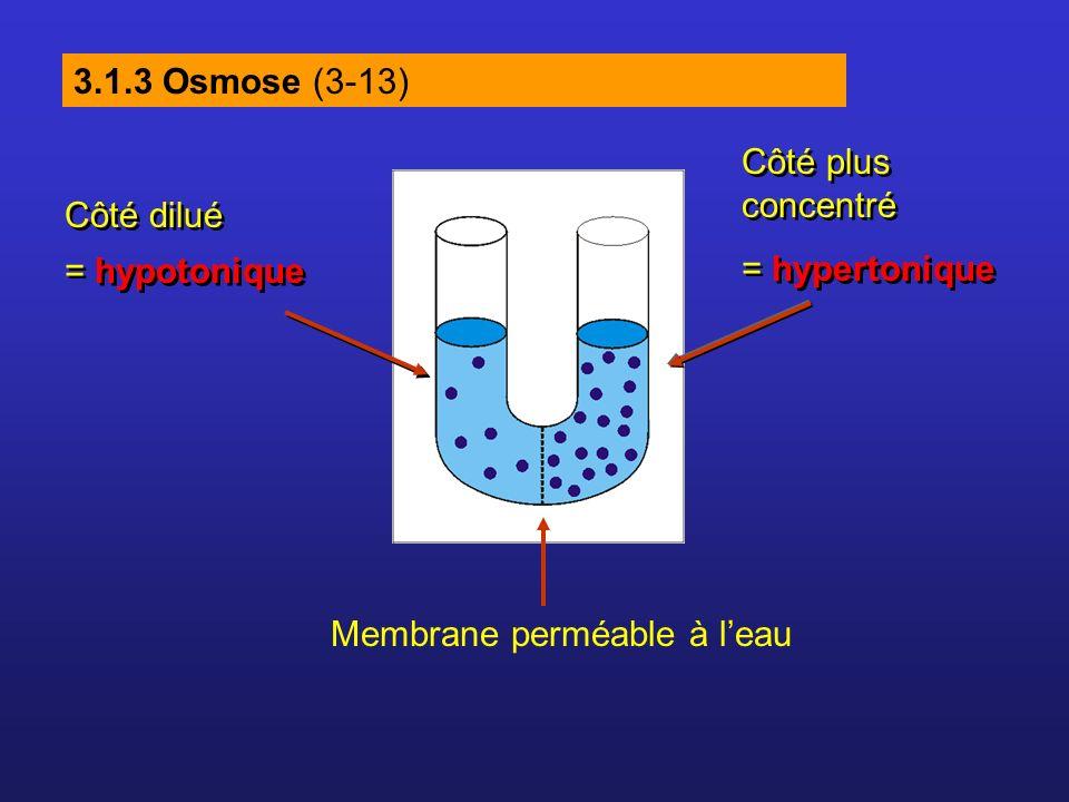 3.1.3 Osmose (3-13) Côté dilué = hypotonique Côté dilué = hypotonique Côté plus concentré = hypertonique Côté plus concentré = hypertonique Membrane p