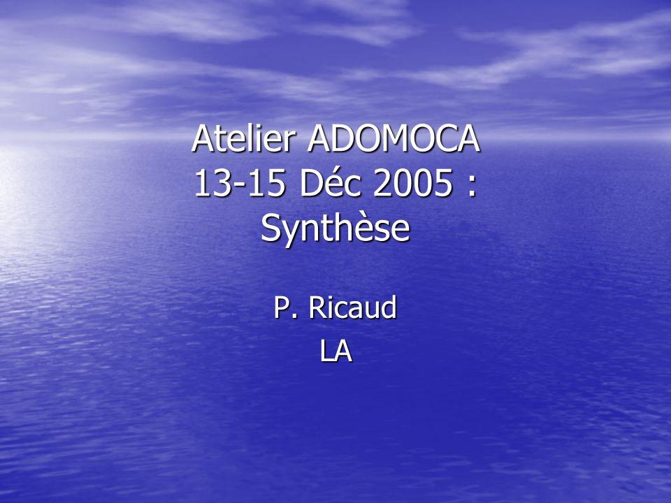Atelier ADOMOCA 13-15 Déc 2005 : Synthèse P. Ricaud LA