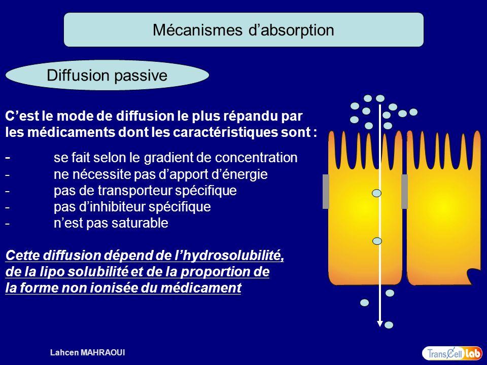 Lahcen MAHRAOUI Mécanismes dabsorption Diffusion passive Cest le mode de diffusion le plus répandu par les médicaments dont les caractéristiques sont