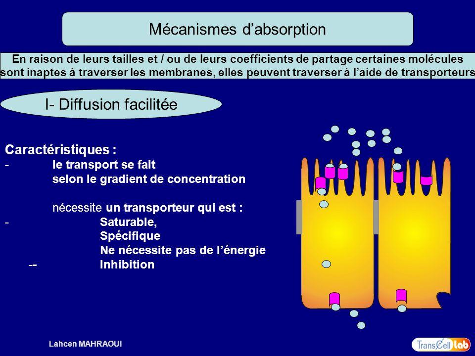 Lahcen MAHRAOUI Mécanismes dabsorption I- Diffusion facilitée Caractéristiques : - le transport se fait selon le gradient de concentration nécessite u