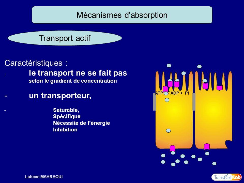 Lahcen MAHRAOUI Mécanismes dabsorption Transport actif Caractéristiques : - le transport ne se fait pas selon le gradient de concentration - un transp
