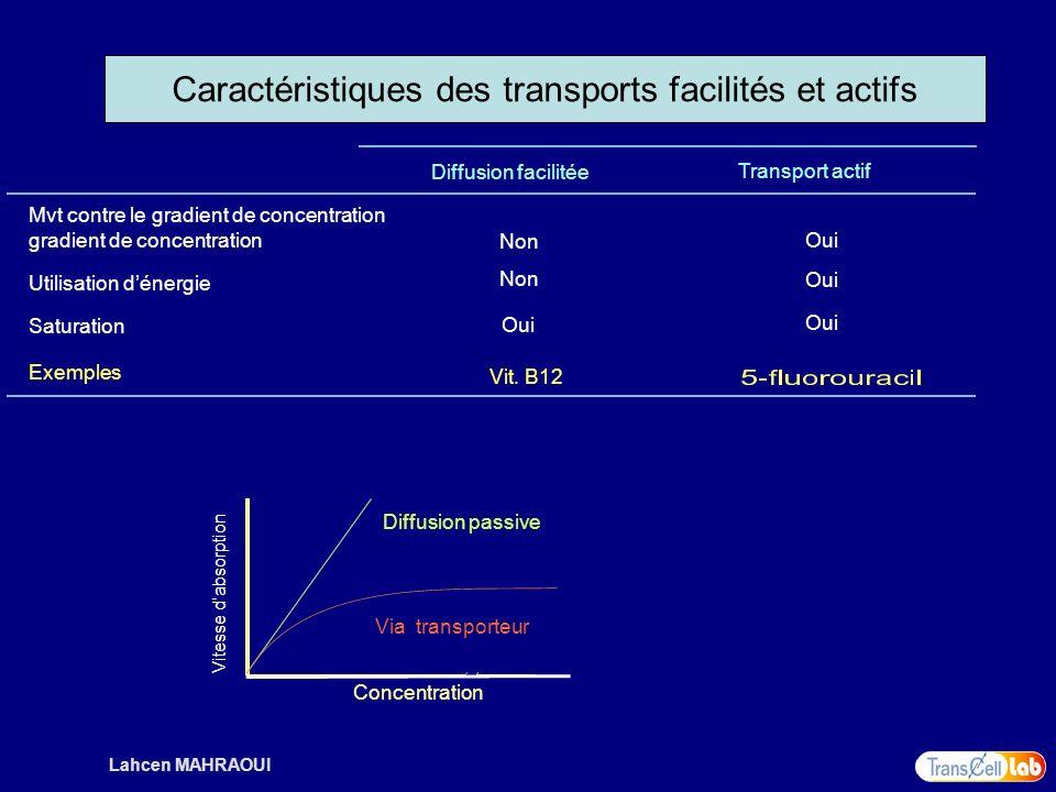 Lahcen MAHRAOUI Mvt contre le gradient de concentration gradient de concentration Non Diffusion facilitée Transport actif Non Oui Vit. B12 Utilisation