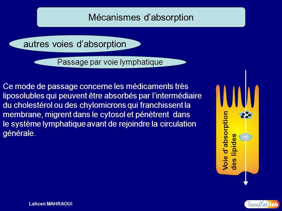 Lahcen MAHRAOUI Mécanismes dabsorption autres voies dabsorption Passage par voie lymphatique Ce mode de passage concerne les médicaments très liposolu