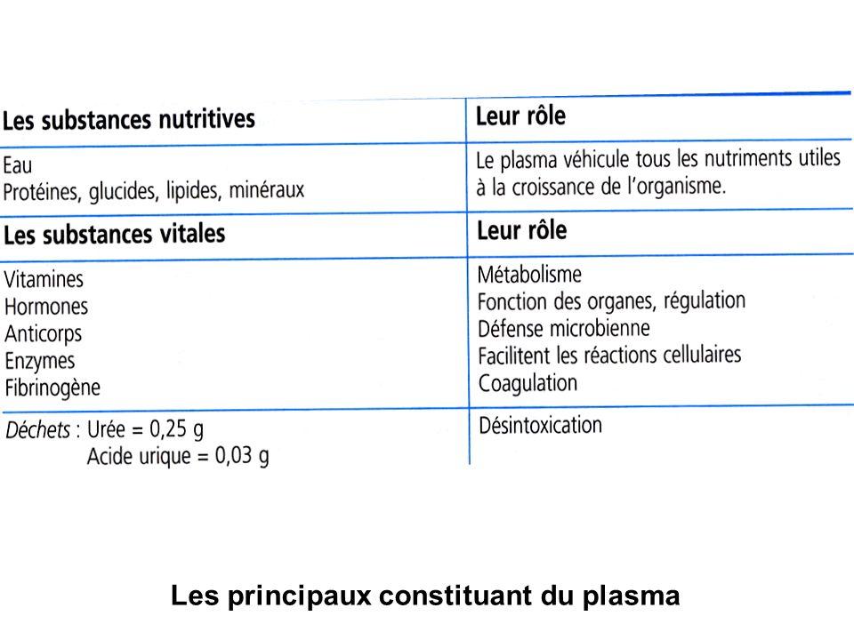 Les principaux constituant du plasma