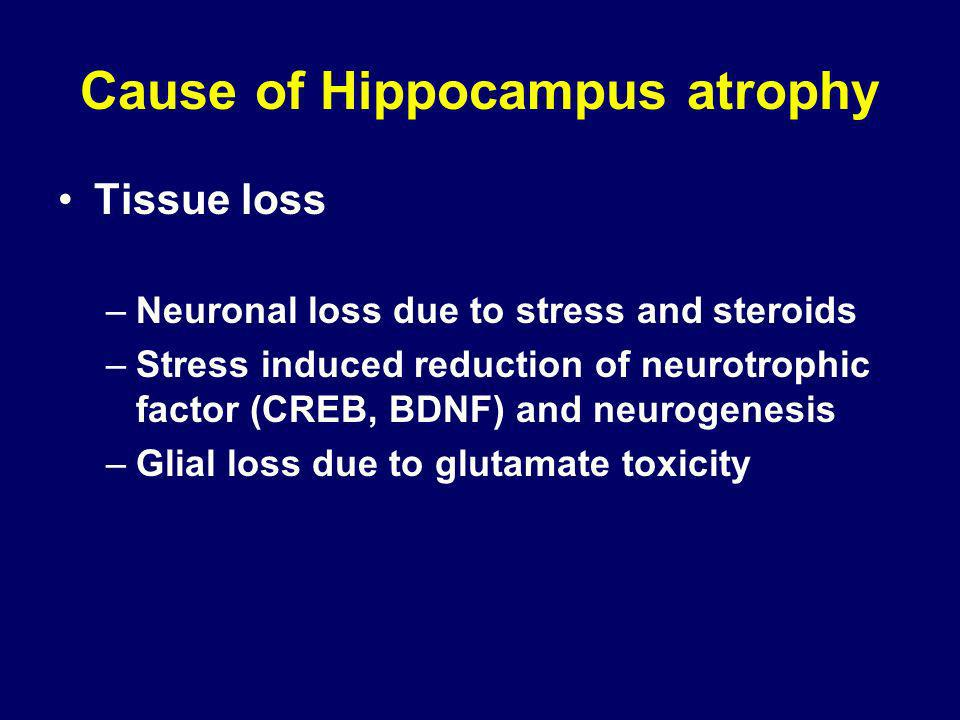Cause of Hippocampus atrophy Tissue loss –Neuronal loss due to stress and steroids –Stress induced reduction of neurotrophic factor (CREB, BDNF) and n