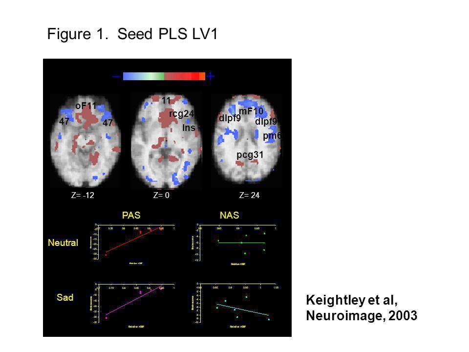 – + PASNAS Neutral Sad dlpf9 oF11 47 mF10 Ins pm6 pcg31 rcg24 dlpf9 47 11 Z= -12Z= 0Z= 24 Figure 1. Seed PLS LV1 Keightley et al, Neuroimage, 2003