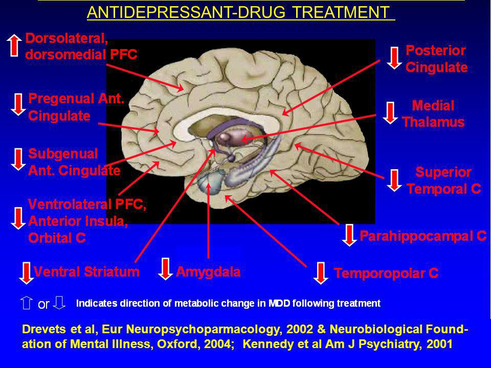 METABOLIC CHANGES ASSOCIATED WITH EFFECTIVE ANTIDEPRESSANT-DRUG TREATMENT Drevets et al, Eur Neuropsychoparmacology, 2002 & Neurobiological Found- ation of Mental Illness, Oxford, 2004; Kennedy et al Am J Psychiatry, 2001