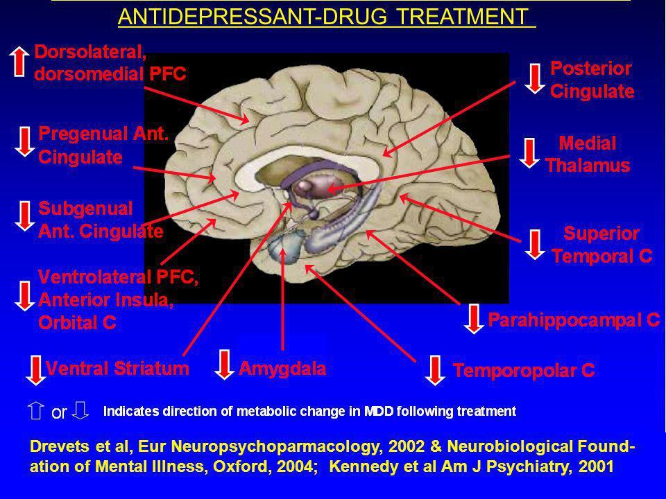 Treatment Effects on Ventral Prefrontal Cortex (PFC), Anterior Cingulate Cortex (ACC) Activity in MDD TreatmentChange: post- vs pre-Tx Brody et al 2001Paroxetine Buchsbaum et al 1997Setraline Ventral ACC Cohen et al 1992Phototherapy Medial Orbital C Drevets & Raichle 1992Desipramine Left VLPFC Drevets et al 1996 1997Setraline VLPFC and Orbital C, Ventral ACC Drevets et al 2002Citalopram VLPFC and Orbital C, Ventral ACC Duan et al.