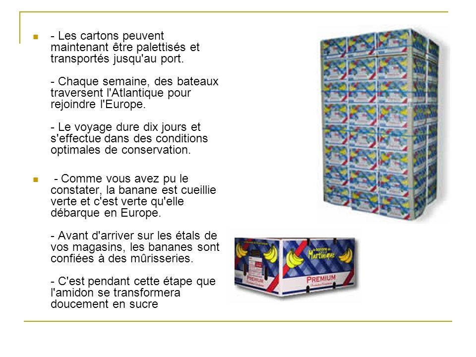 - Les cartons peuvent maintenant être palettisés et transportés jusqu'au port. - Chaque semaine, des bateaux traversent l'Atlantique pour rejoindre l'