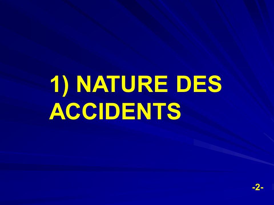 -2- 1) NATURE DES ACCIDENTS