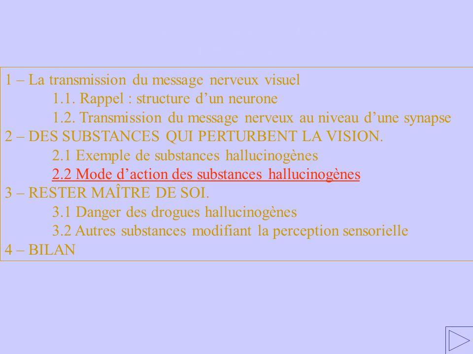 2.2 Mode daction des substances hallucinogènes 1 – La transmission du message nerveux visuel 1.1. Rappel : structure dun neurone 1.2. Transmission du