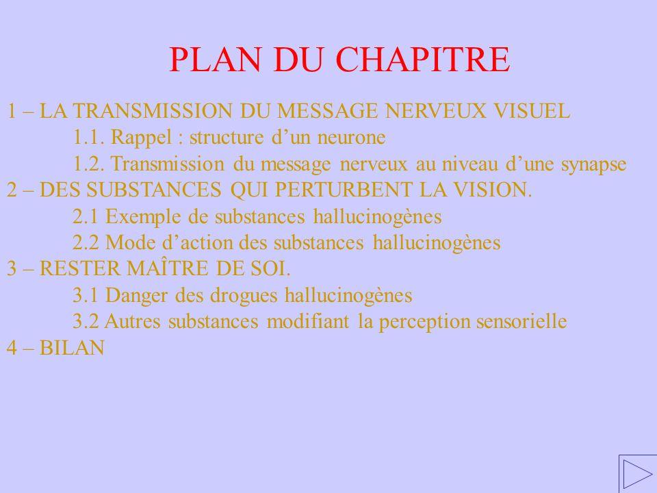 PLAN DU CHAPITRE 1 – LA TRANSMISSION DU MESSAGE NERVEUX VISUEL 1.1. Rappel : structure dun neurone 1.2. Transmission du message nerveux au niveau dune