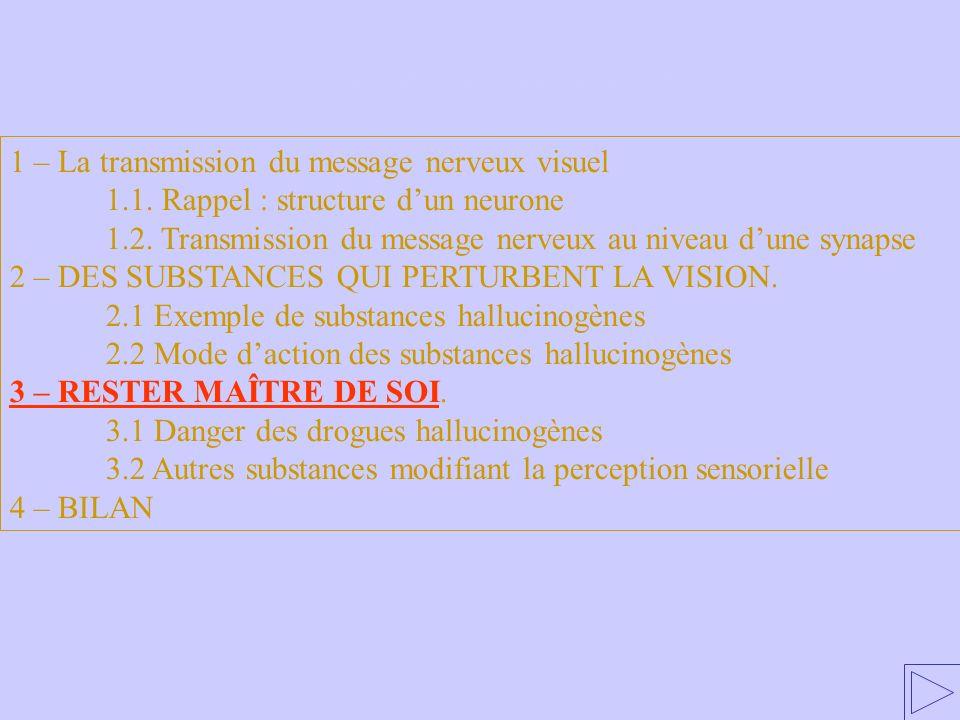 3 – RESTER MAÎTRE DE SOI 1 – La transmission du message nerveux visuel 1.1. Rappel : structure dun neurone 1.2. Transmission du message nerveux au niv