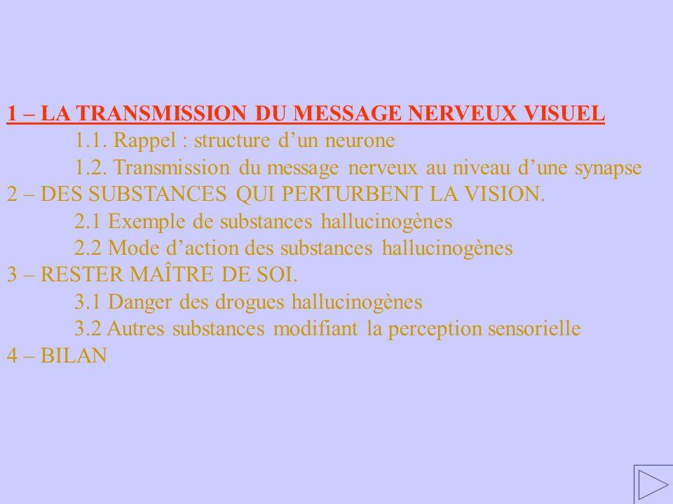1 – LA TRANSMISSION DU MESSAGE NERVEUX VISUEL 1.1. Rappel : structure dun neurone 1.2. Transmission du message nerveux au niveau dune synapse 2 – DES
