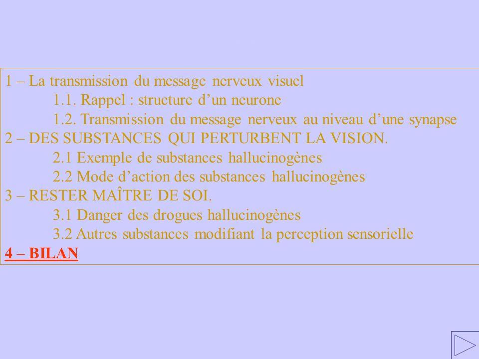 4 – BILAN 1 – La transmission du message nerveux visuel 1.1. Rappel : structure dun neurone 1.2. Transmission du message nerveux au niveau dune synaps