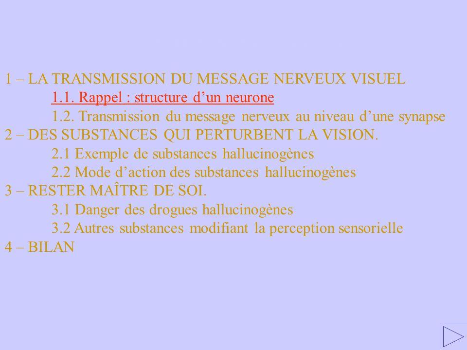 1.1 Rappel : structure dun neurone 1 – LA TRANSMISSION DU MESSAGE NERVEUX VISUEL 1.1. Rappel : structure dun neurone 1.2. Transmission du message nerv