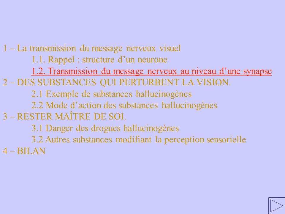 1.2 Transmission du message nerveux au niveau dune synapse 1 – La transmission du message nerveux visuel 1.1. Rappel : structure dun neurone 1.2. Tran