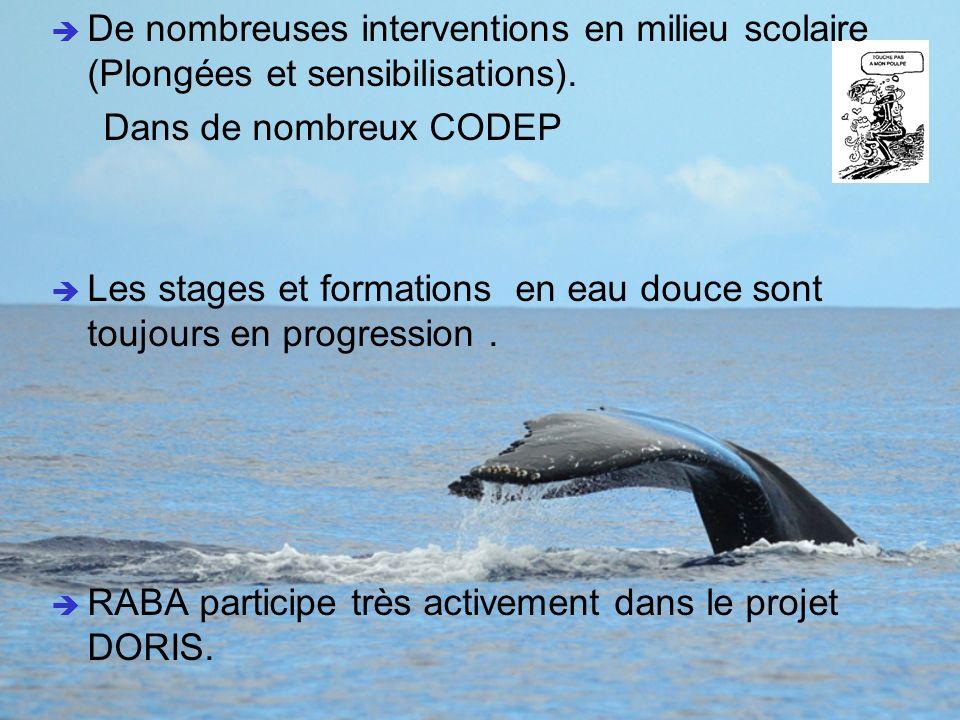 Sciences & Citoyens Les sciences citoyennes, ou sciences participatives.