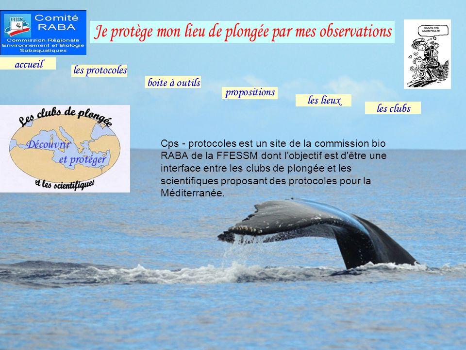 Cps - protocoles est un site de la commission bio RABA de la FFESSM dont l'objectif est d'être une interface entre les clubs de plongée et les scienti
