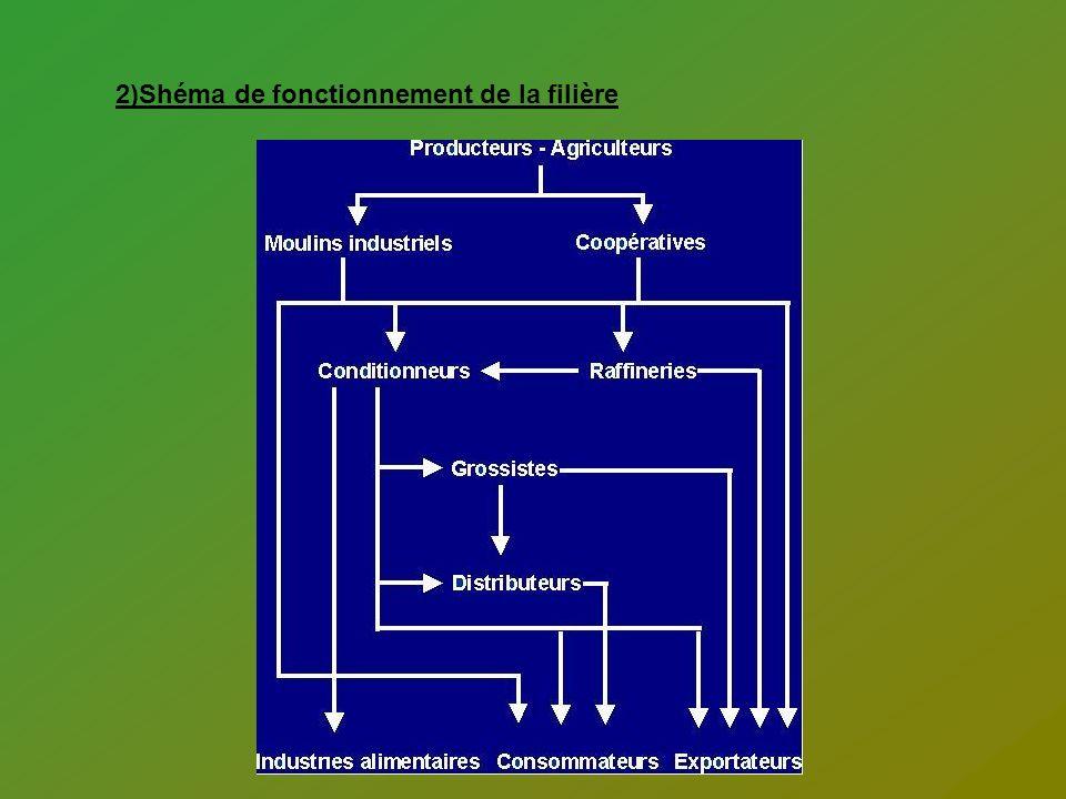2)Shéma de fonctionnement de la filière