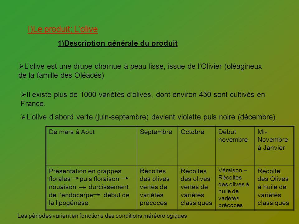 I)Le produit; Lolive 1)Description générale du produit Lolive est une drupe charnue à peau lisse, issue de lOlivier (oléagineux de la famille des Oléa