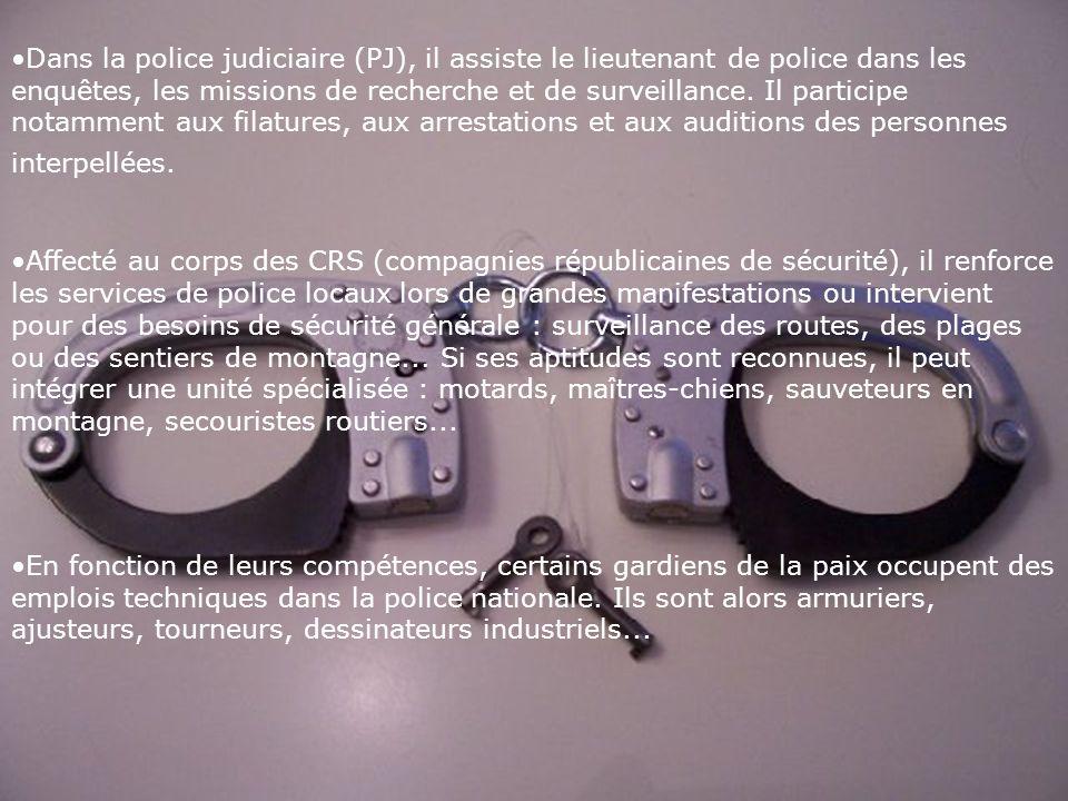 Dans la police judiciaire (PJ), il assiste le lieutenant de police dans les enquêtes, les missions de recherche et de surveillance.