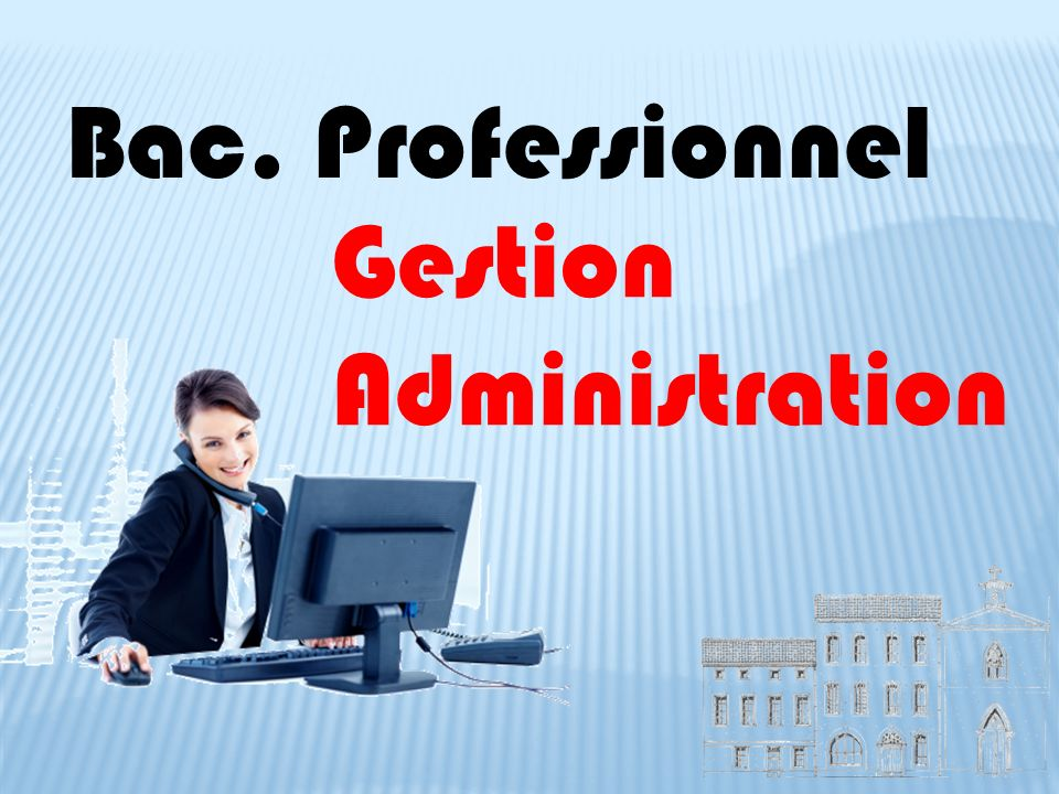 Bac. Professionnel Gestion Administration