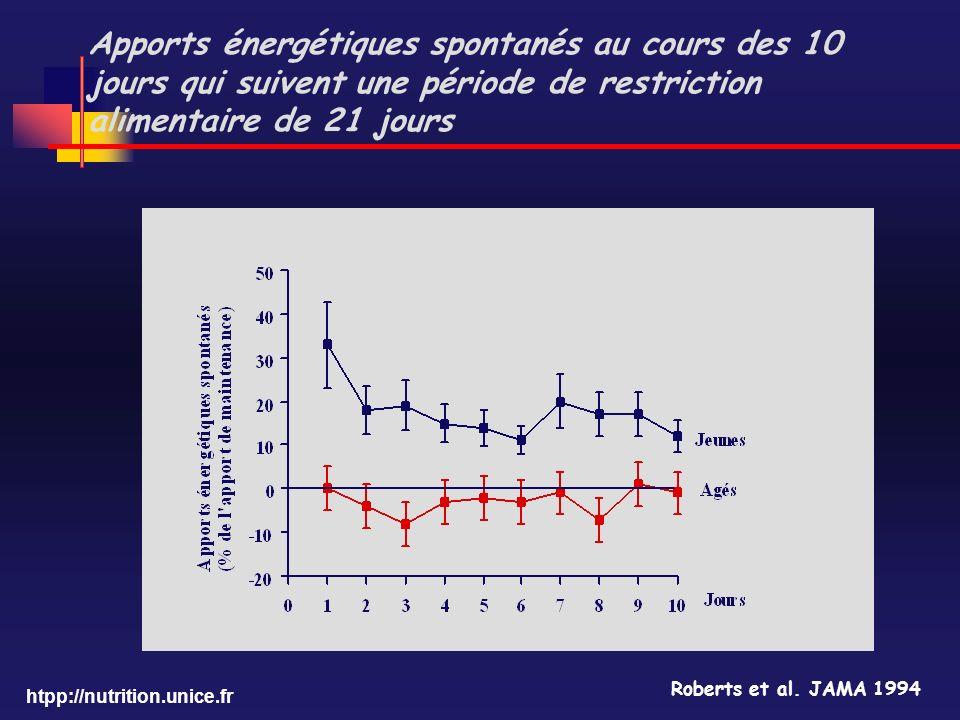 htpp://nutrition.unice.fr Apports énergétiques spontanés au cours des 10 jours qui suivent une période de restriction alimentaire de 21 jours Roberts